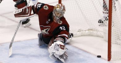 For the Arizona Coyotes, It's Been a Run of Bad Puck